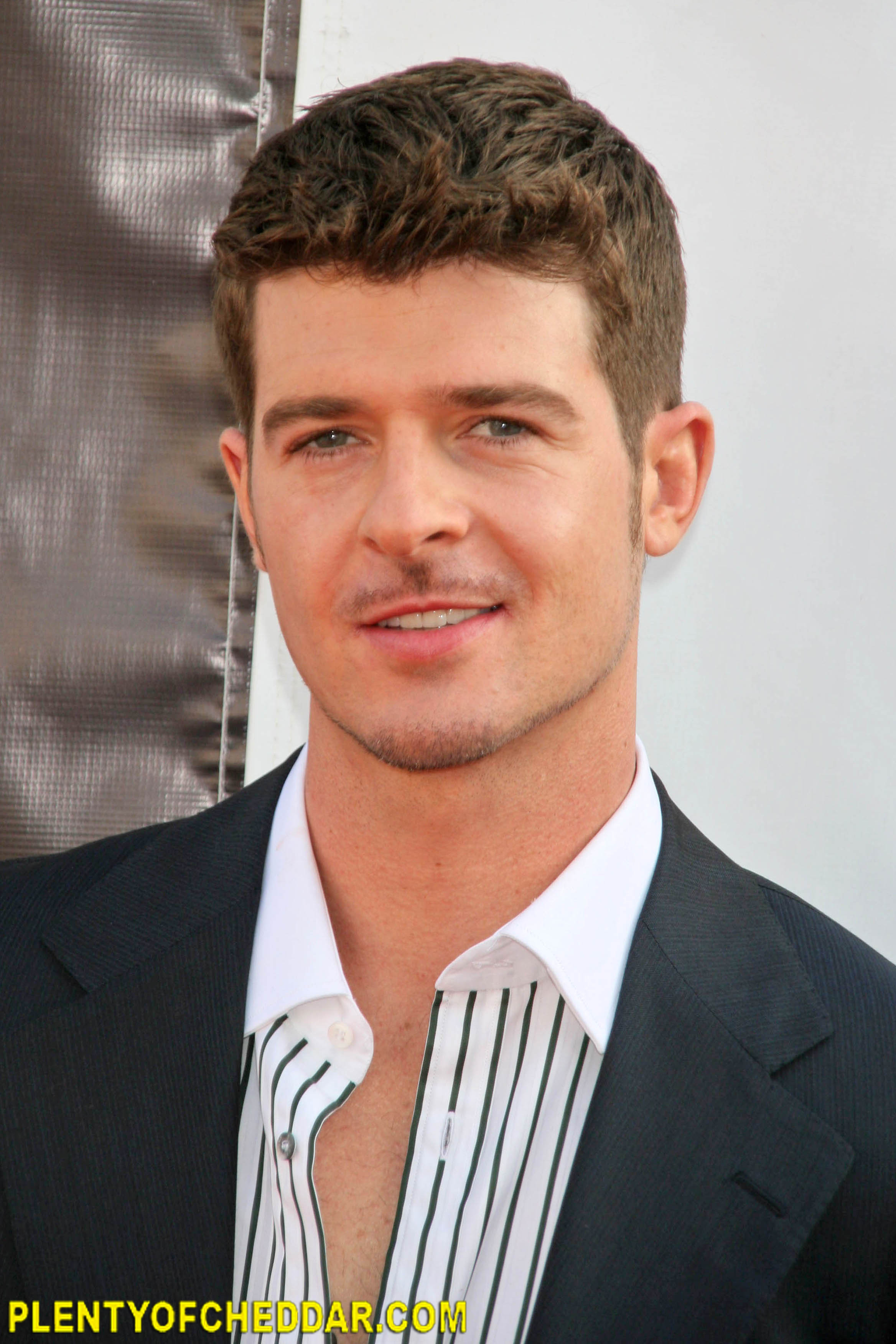 Robin thicke net worth plenty of cheddar robinthicke nvjuhfo Image collections