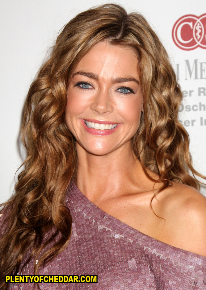 Denise Richards worth