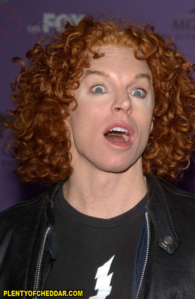 Carrot Top Net Worth 2019: Money, Salary, Bio | CelebsMoney