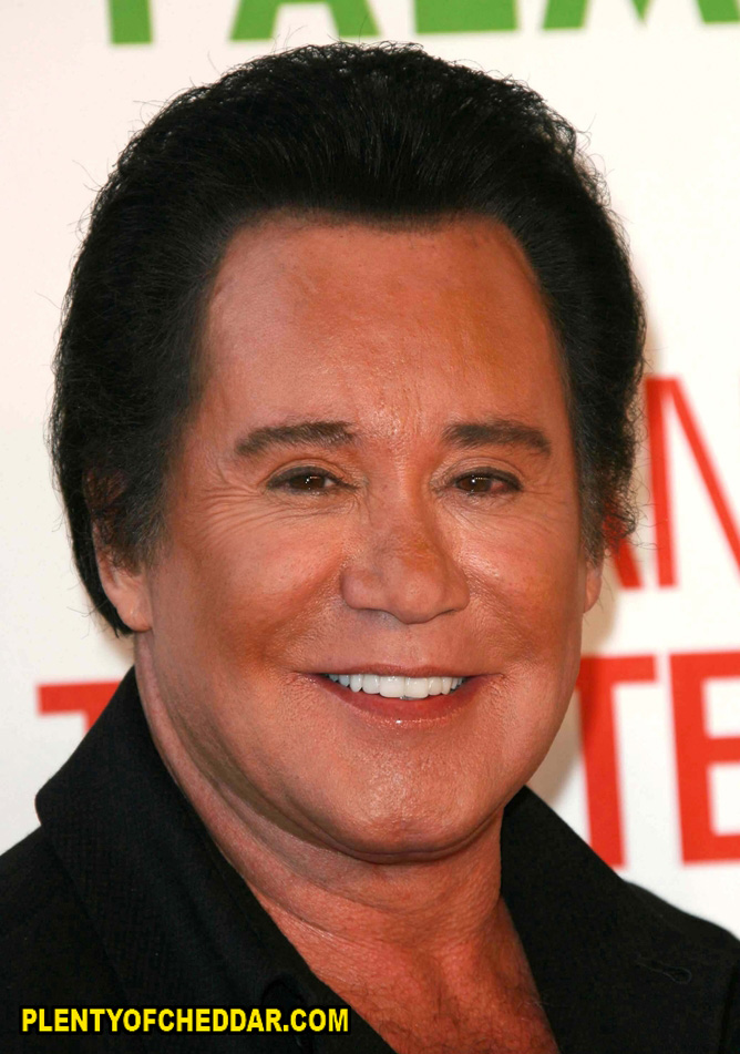 Quotes by Wayne Newton @ Like Success