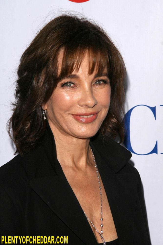 Anne Archer roles