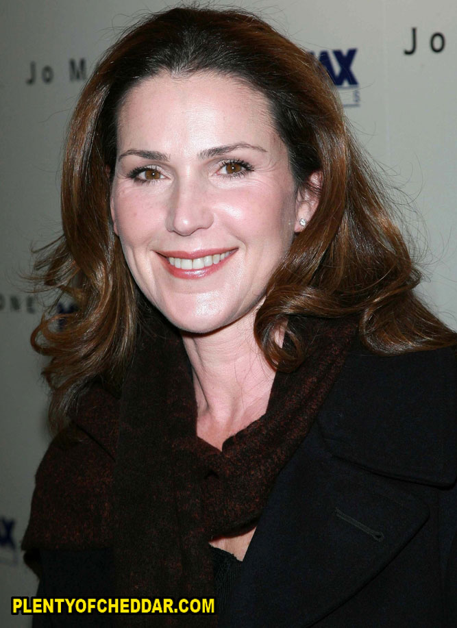 Peri Gilpin net worth 2012